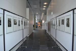 Fotoausstellung mit Bildern von Herrn Riemann